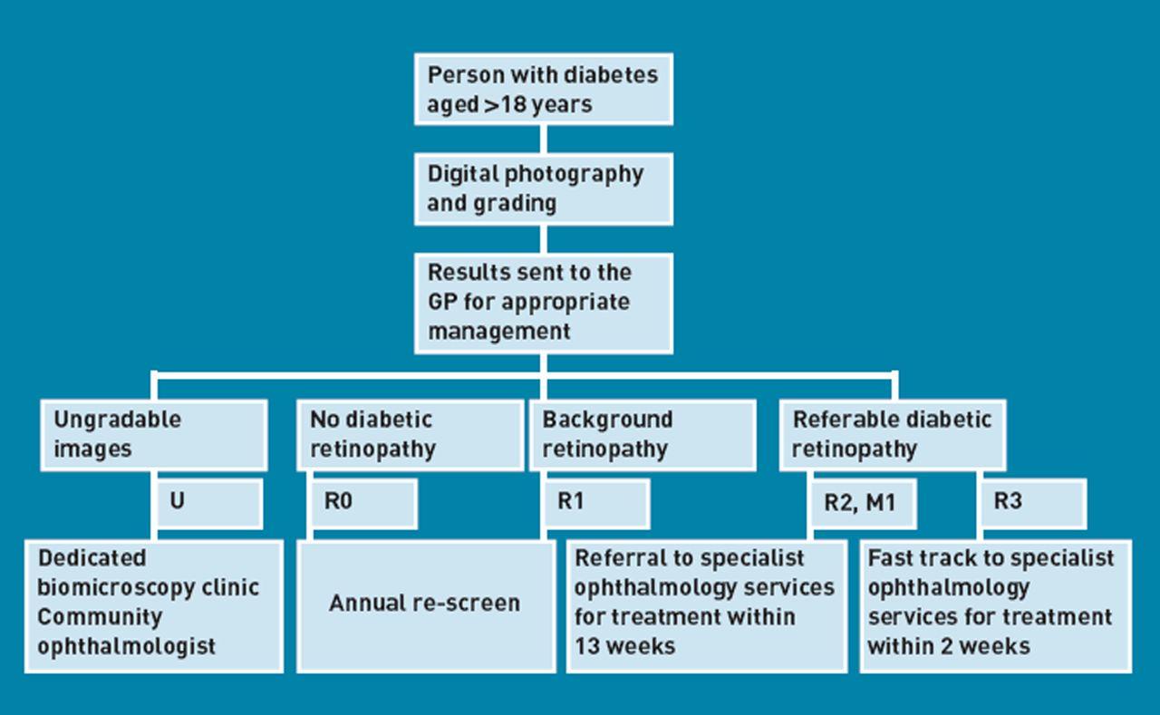 Quality Assured Screening For Diabetic Retinopathy